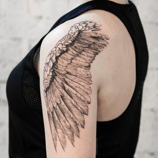 тату крылья ангела фото анастасии ковалевой все